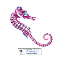 CNY180039_Diaphonized Specimens Coasters-Seahorse (1)