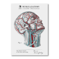 TWY180116_科學明信片 - 人體解剖圖 (頭) Science Postcard - Anatomy Image (Head)