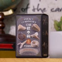 FOSSIL (1)